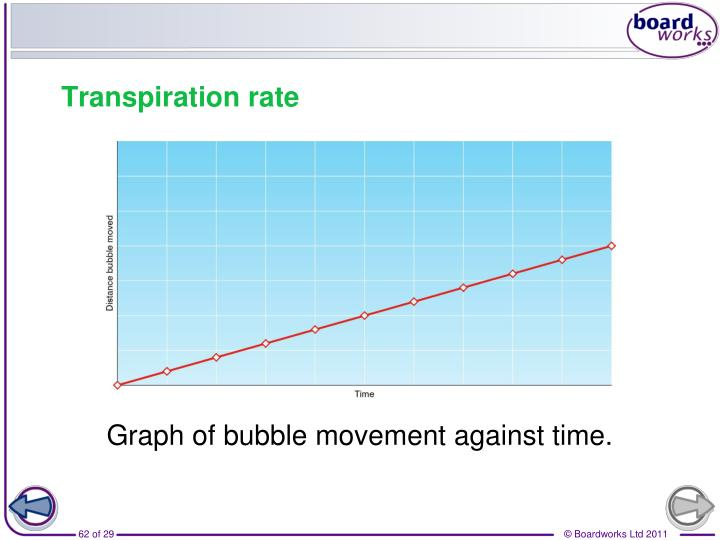Graph of bubble movement against time.
