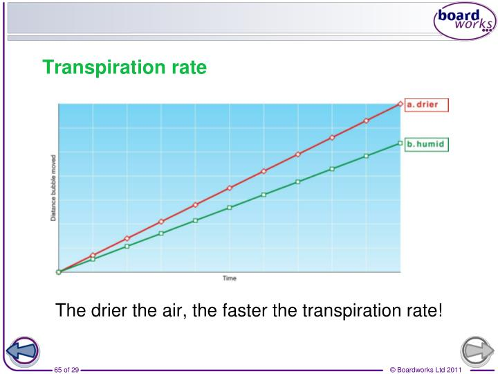 The drier the air, the faster the transpiration rate!