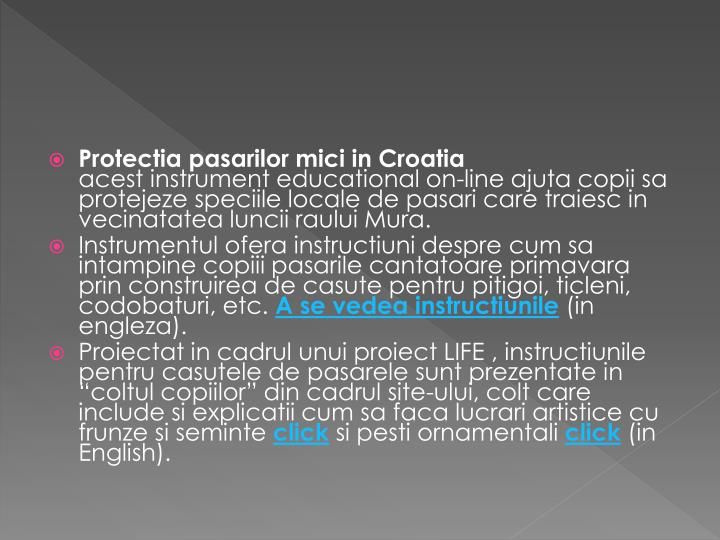 Protectia pasarilor mici in Croatia