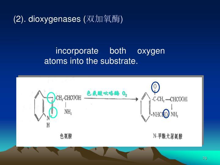 色氨酸吡咯酶