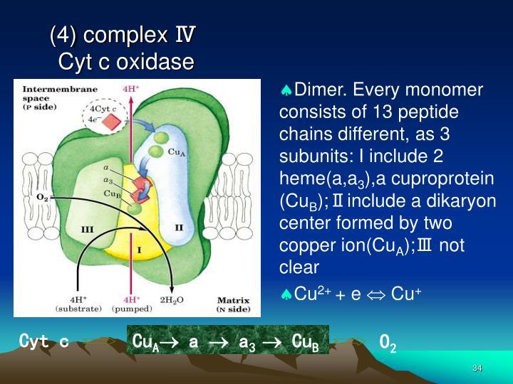 (4) complex Ⅳ
