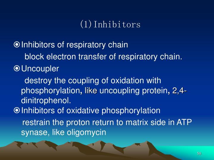 (1)Inhibitors
