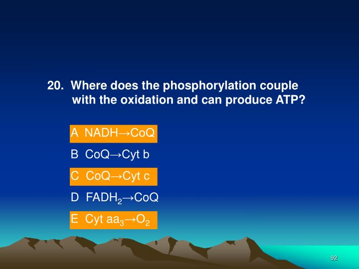 20.  Where does the phosphorylation couple with the oxidation and can produce ATP?