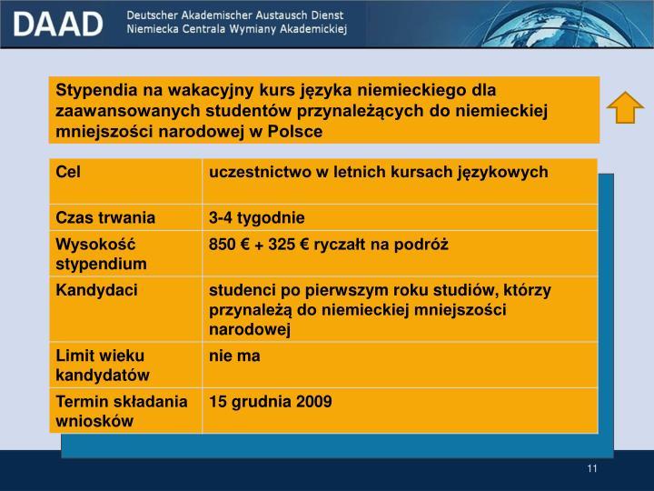 Stypendia na wakacyjny kurs języka niemieckiego dla zaawansowanych studentów przynależących do niemieckiej mniejszości narodowej w Polsce
