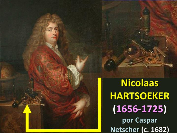 Nicolaas