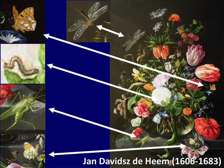 Jan Davidsz de Heem (1606-1683)