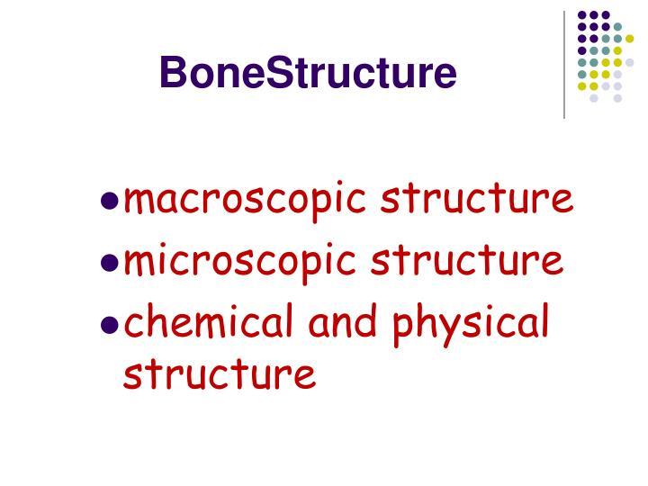 BoneStructure
