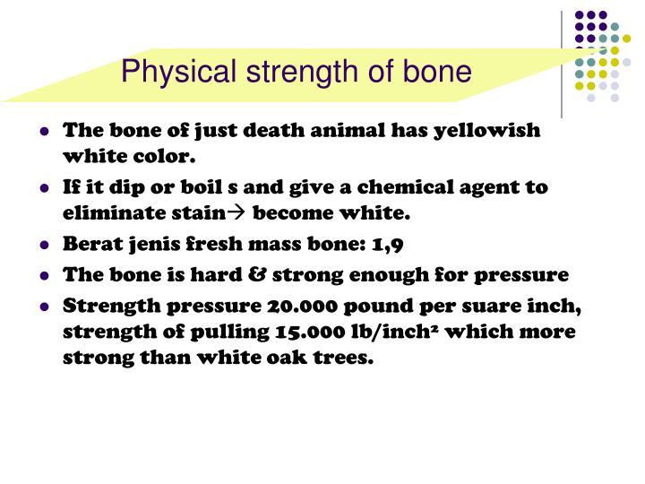 Physical strength of bone