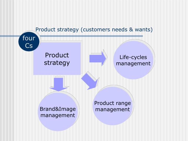 Product strategy (customers needs