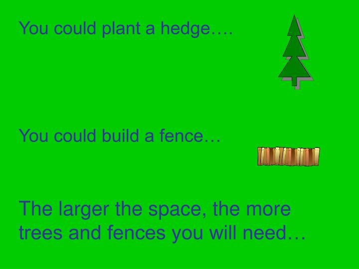 You could plant a hedge….