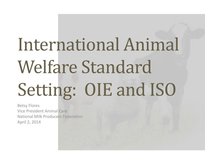 International animal welfare standard setting oie and iso