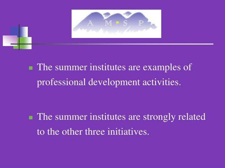 The summer institutes are examples of professional development activities.