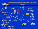 glucose transport and storage signaling pathways 2000