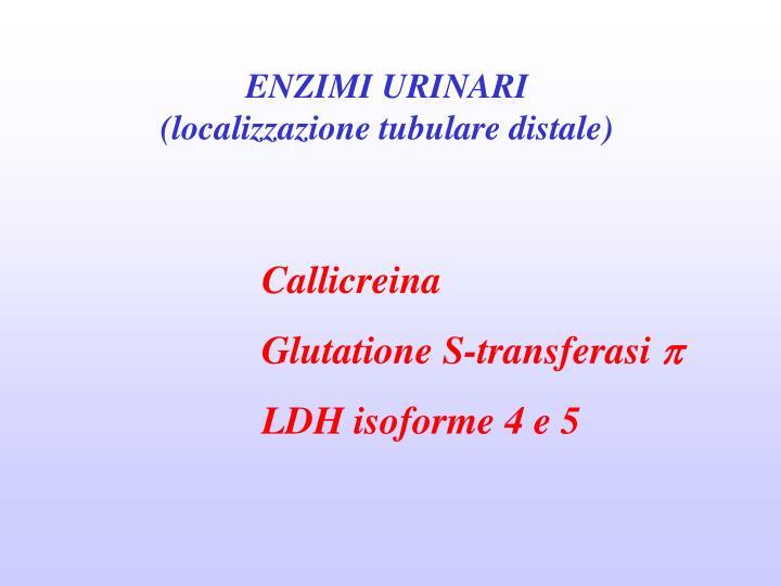 ENZIMI URINARI