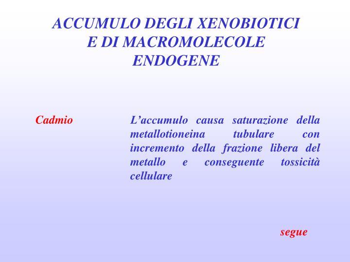 ACCUMULO DEGLI XENOBIOTICI E DI MACROMOLECOLE ENDOGENE