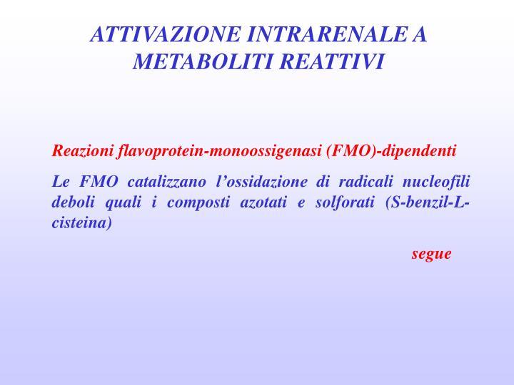 ATTIVAZIONE INTRARENALE A METABOLITI REATTIVI
