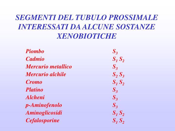 SEGMENTI DEL TUBULO PROSSIMALE INTERESSATI DA ALCUNE SOSTANZE XENOBIOTICHE