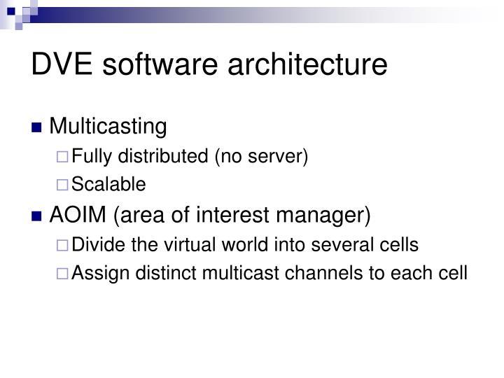 DVE software architecture