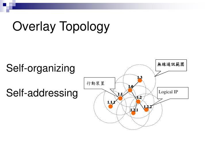 Overlay Topology