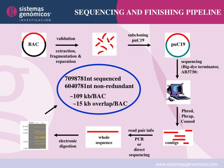 SEQUENCING AND FINISHING PIPELINE