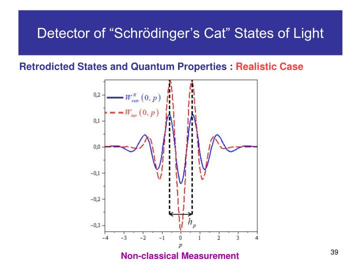 "Detector of ""Schrödinger's Cat"" States of Light"