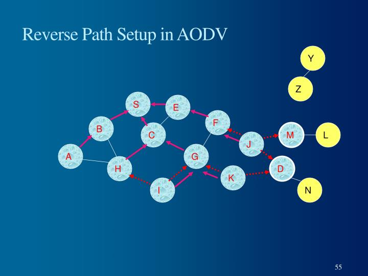 Reverse Path Setup in AODV