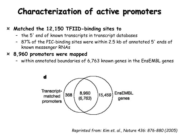 Characterization of active promoters
