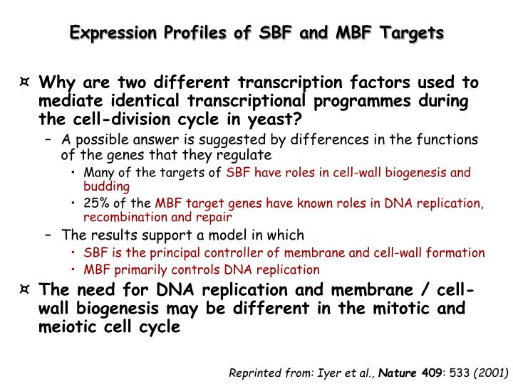 Expression Profiles of SBF and MBF Targets
