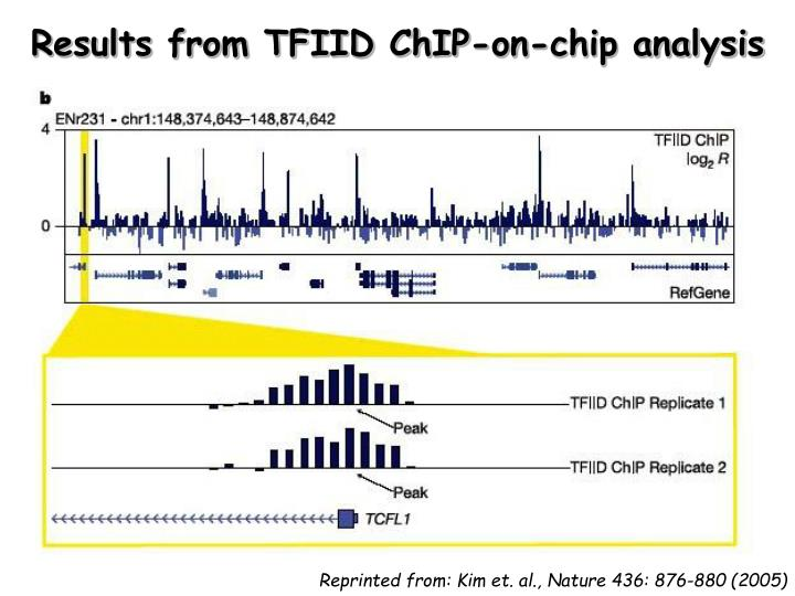 Results from TFIID ChIP-on-chip analysis