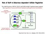 role of gal4 in galactose dependent cellular regulation