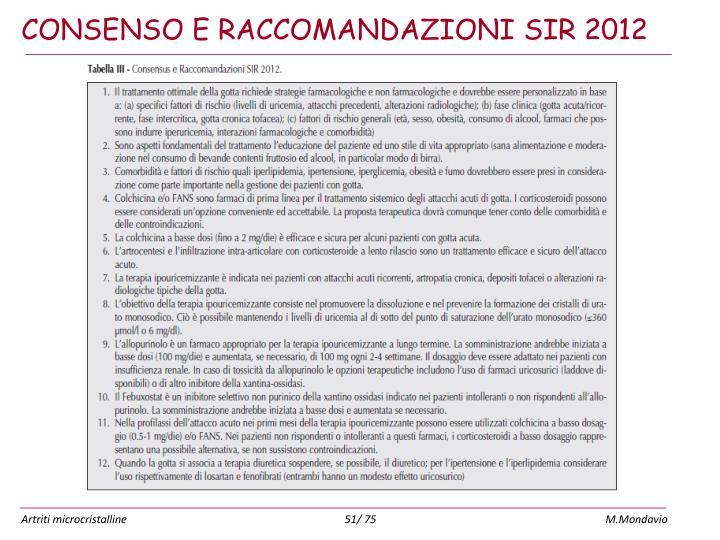 CONSENSO E RACCOMANDAZIONI SIR 2012