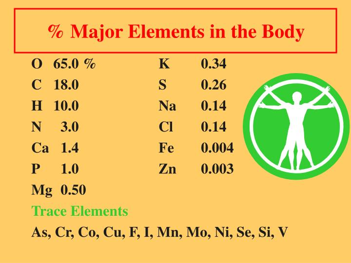 % Major Elements in the Body