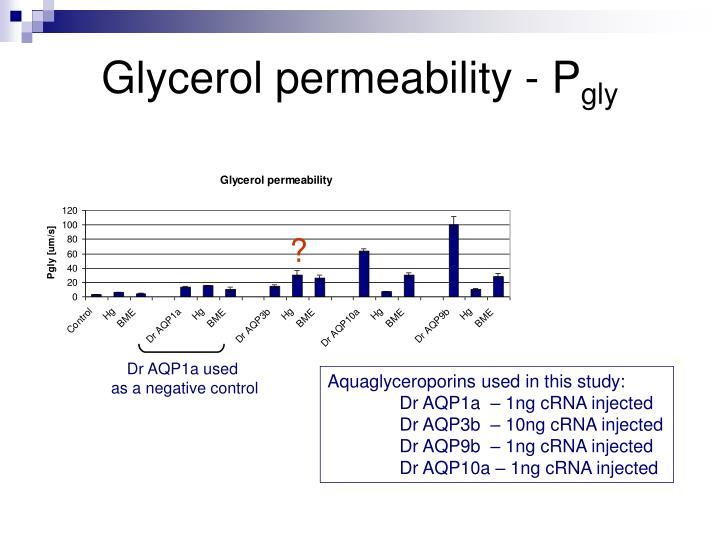 Glycerol permeability - P