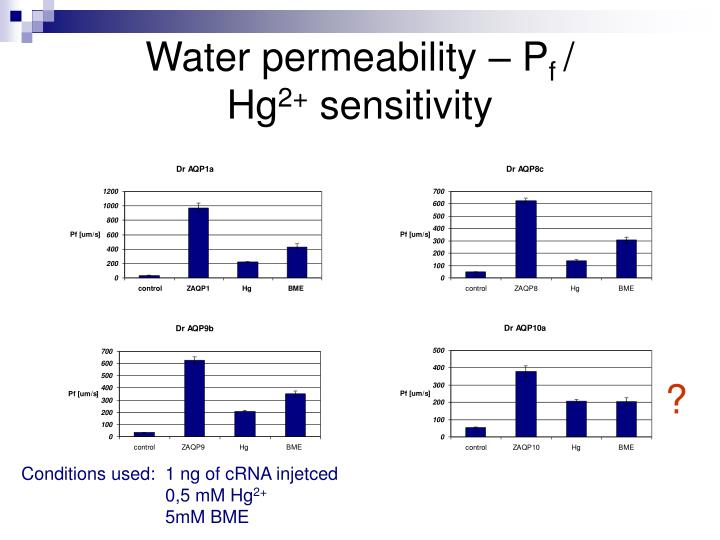 Water permeability – P