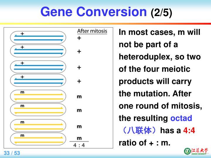 Gene Conversion