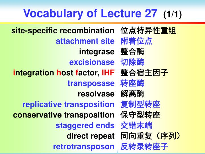 Vocabulary of Lecture 27