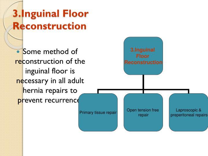 3.Inguinal Floor