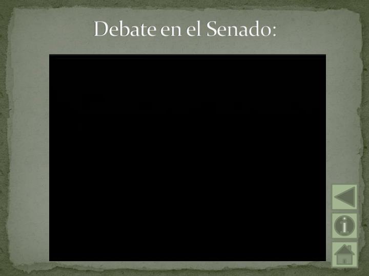 Debate en el Senado: