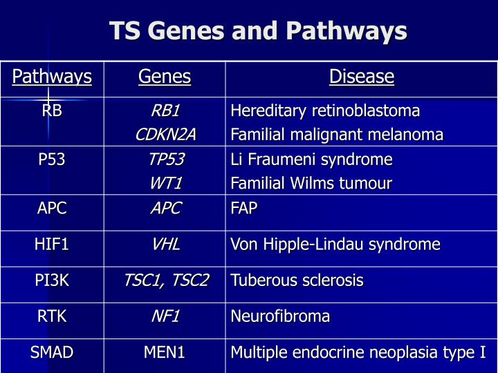 TS Genes and Pathways