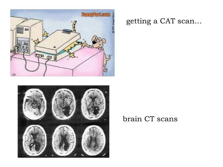 getting a CAT scan…