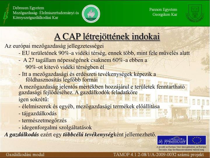 A CAP létrejöttének indokai