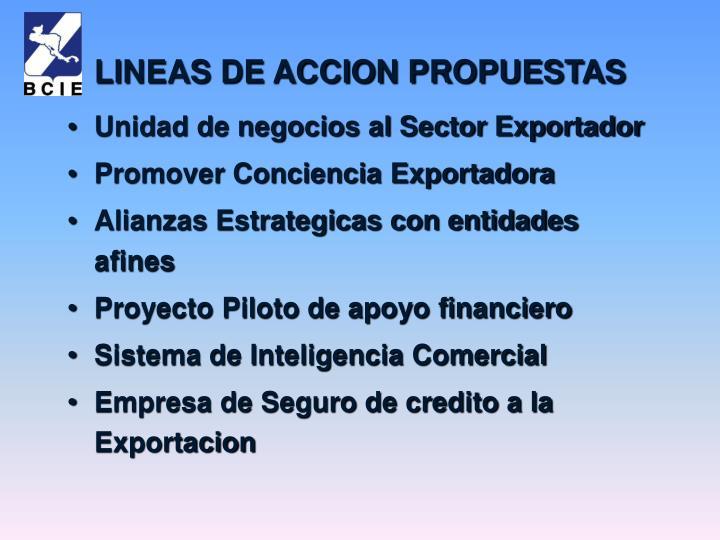 Unidad de negocios al Sector Exportador