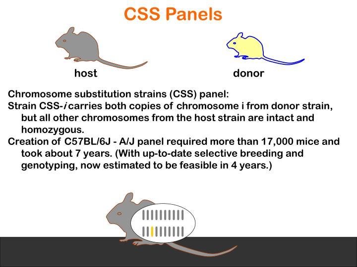 CSS Panels