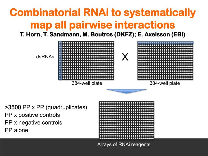 Combinatorial RNAi to systematically map all pairwise interactions