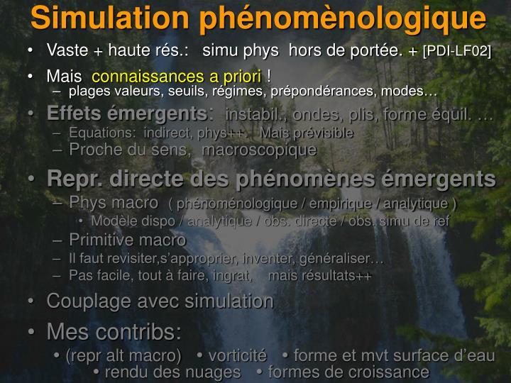 Simulation phénomènologique