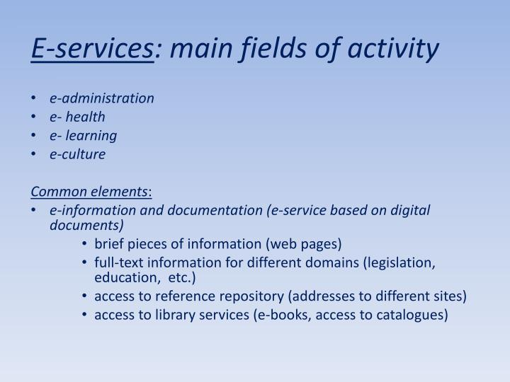 E services main fields of activity