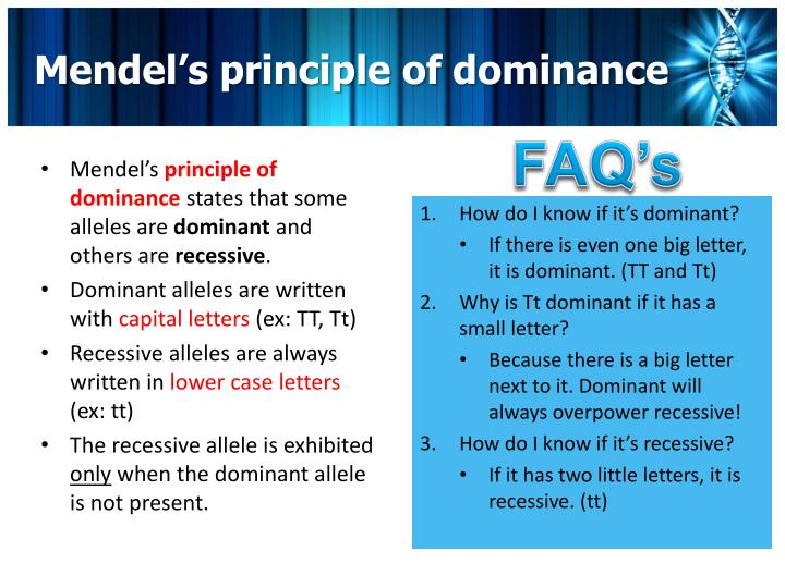 Mendel's principle of dominance