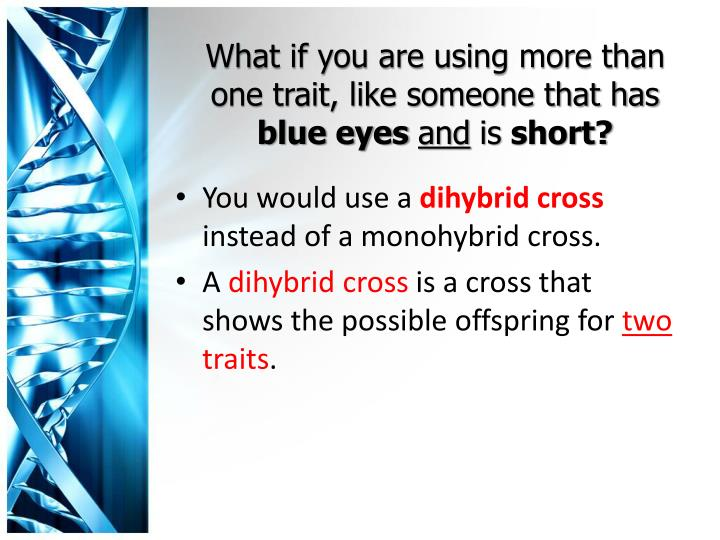 What if you are using more than one trait, like someone that has