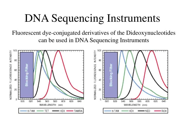 DNA Sequencing Instruments