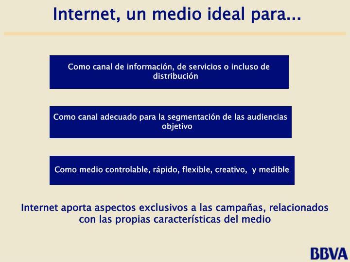 Internet aporta aspectos exclusivos a las campañas, relacionados con las propias características del medio